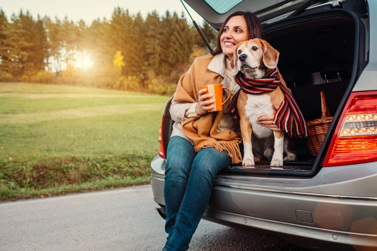 Travel with your dog in New York Rental by Owner