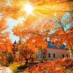 2019 Fall Foliage in New York State