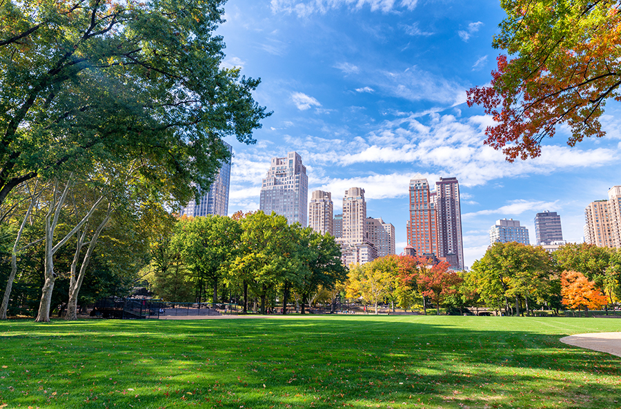 20 Best Things To Do in New York City For Free - parks
